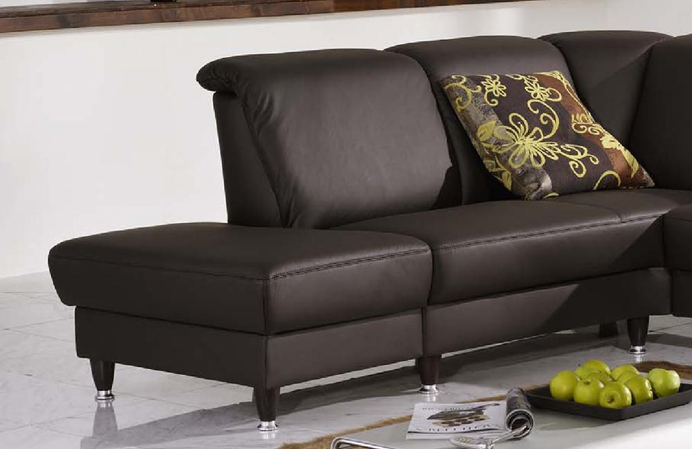 f s polsterm bel 2070 domino ledersofa braun m bel letz. Black Bedroom Furniture Sets. Home Design Ideas