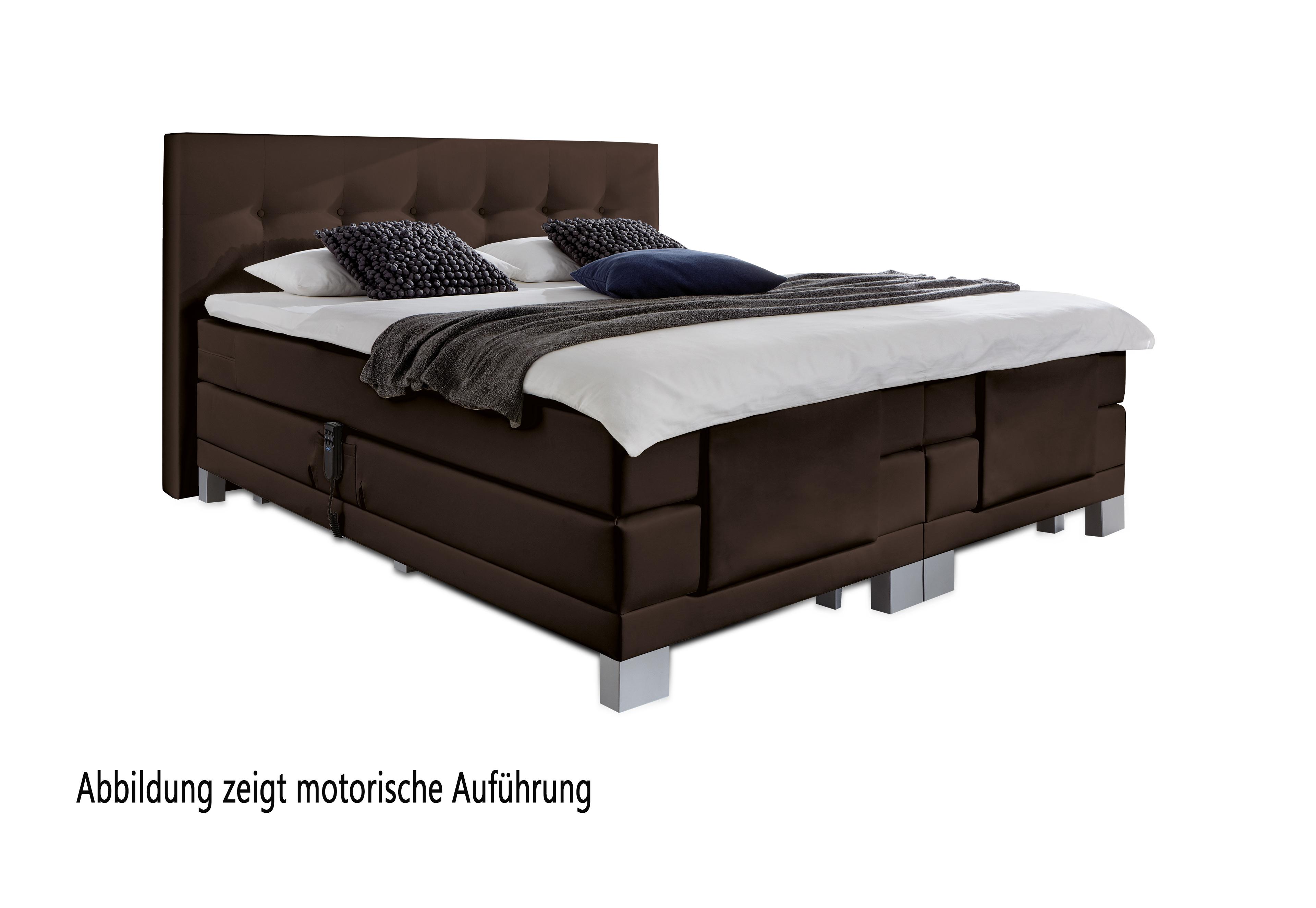 boxspringbett allround von napco in braun m bel letz ihr online shop. Black Bedroom Furniture Sets. Home Design Ideas