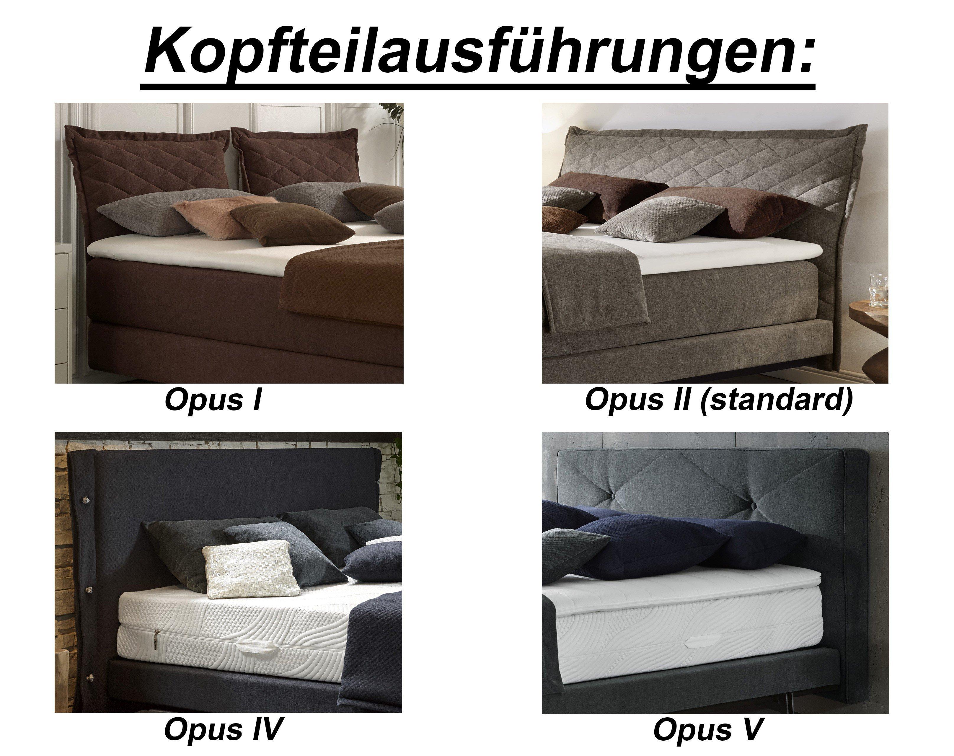 Femira Boxspringbett Creation Opus I in Braun   Möbel Letz - Ihr ...