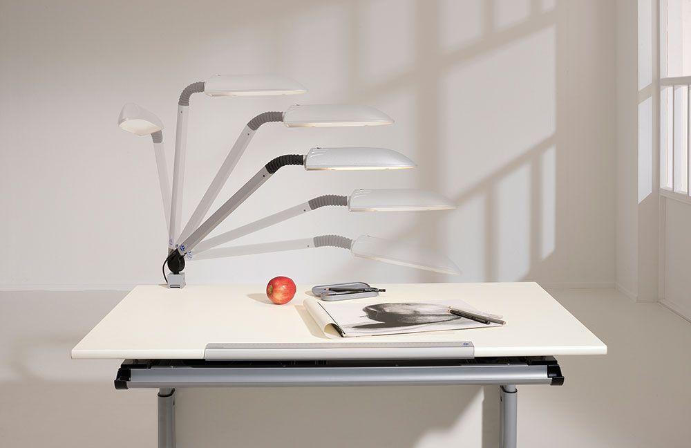 marco gt 130 kinderschreibtisch von paidi m bel letz ihr online shop. Black Bedroom Furniture Sets. Home Design Ideas